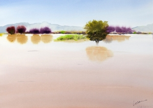 "Loisanne Keller, ""Whitewater Draw After the Monsoons."""